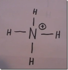 dot diagram for cyanide polyatomic ion structures janet gray coonce  polyatomic ion structures janet gray coonce